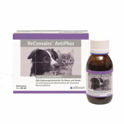 ReConvales AntiPhos flüssig für Hunde und Katzen